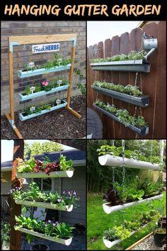 This DIY hanging gutter garden will save you lots of garden space!