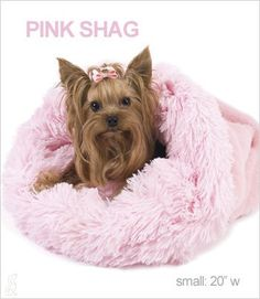 Ballet Pink Shag Cuddle Cup Bed for Dogs by Susan Lanci