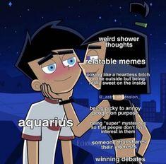 Aquarius Traits, Aquarius Quotes, Zodiac Sign Traits, Capricorn And Aquarius, Zodiac Signs Horoscope, Zodiac Memes, Zodiac Star Signs, My Zodiac Sign, Astrology Zodiac