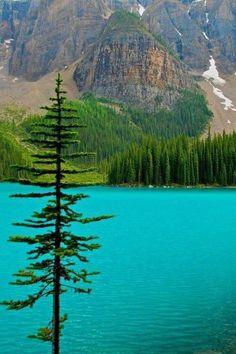 Agua turquesa en el lago Moraine. Alberta, Canadá.