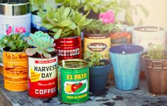 I love this idea!  Today I saw basil in coffee tins on outdoor tables at a cafe.  It's a definite for my balcony!
