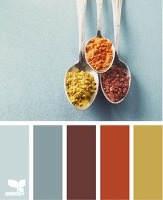 """Color Spice"" - Colors for autumn."