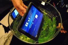 Fujitsu Waterproof Android Tablet