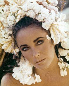 Elizabeth Taylor by Gianni Bozzacchi, 1969.
