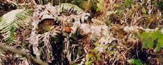 Snipers en Spotters