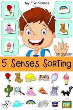 FREE printable Five Senses sorting activity for toddlers and preschoolers. …