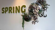 logo mos in combinatie met modulaire planten= realisatie van Any Green Moss Fashion, Spring, Terrarium, Planters, Leaves, Green Walls, Wreaths, Interior, Logo