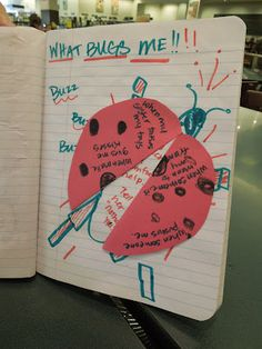 "After reading grouchy lady bug, create a ""what bugs me"" book."