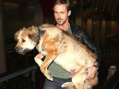 Mr. Gosling and his big dog.