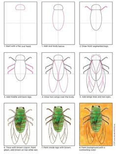 Learn how to draw a cicada and then paint its fuzzy body and transparent wings. Simple crayons and watercolor do the job amazingly well. Painting For Kids, Drawing For Kids, Art For Kids, Group Art Projects, Projects For Kids, Kids Art Galleries, Directed Drawing, Insect Art, Art Activities