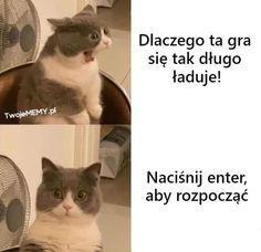 Polish Memes, Funny Memes, Jokes, Language, Lol, Humor, Anime, Husky Jokes, Humour