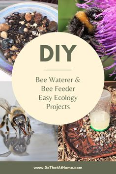 Help save the bees and pollinators - Feel good and Easy DIY project - Why water and feed bees?Bees and other pollinators need water to live, just as other animals do. Water is also used to help keep the hive cool, for thinning the nectar that they feed to larva, as well as keeping  the humidity inside the hive at correct levels during dry times. #diy #pollinators #bees #savethebees Bee Feeder, Feeding Bees, Hand Crafts For Kids, Peanut Butter Jar, Backyard Projects, Diy Projects, Artificial Turf, Rain Garden, Eco Friendly House