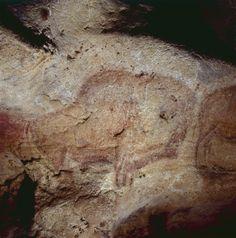 Bisons - Conventions formelles des représentations figuratives - Technique et… Bison, Art Pariétal, Ancient Art, Decoration, Painted Rocks, Cave, Paintings, France, Drawings