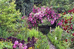 Rosenbogen im Bauerngarten