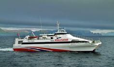 Scandinavian Countries, North Sea, Lofoten, Fishing Villages, Whale Watching, Catamaran, West Coast, Finland, Norway