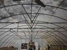 Commercial Greenhouse, Fair Grounds