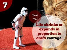 Motivational Quotes: Episode II – The Stormtroopers Strike Back Movie Quotes, Life Quotes, Postive Thoughts, Best Positive Quotes, Remember Quotes, Motivational Quotes, Inspirational Quotes, Positive Psychology, Confidence Quotes