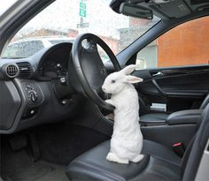 """""""Just get in the car, Alice. I'll explain on the way."""""""