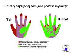 Dziś przedstawiamy wam najbardziej pomijane obszary podczas mycia rąk. Nigdy więcej nie dopuść do tego, aby znajdowały się na nim bakterie. Od teraz myjemy dłonie jeszcze dokładniej.