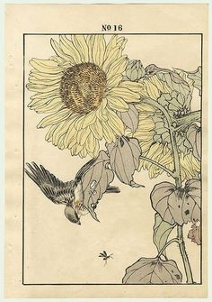 "Flowers for peace. ""Sunflower and bird"", Imao Keinen (1845-1924) - No.16 of the ""Autumn Group"" part of the Series ""Four seasons"", 1891."