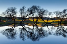 50 Smashing Reflection Photography Examples to Boost Your Creativity