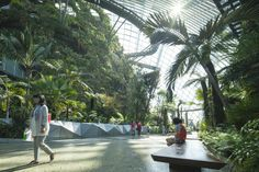 Gardens by the Bay | Grant Associates Planet Earth 2, Gardens By The Bay, Singapore, Exotic, Environment, Photography, Photograph, Fotografie, Photoshoot