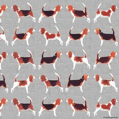 beagle meets beagle surface pattern