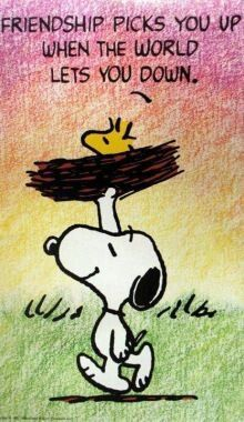 Snoopy Friendship picks you Up when the World lets you Down. - Snoopy and Woodstock Snoopy Love, Charlie Brown And Snoopy, Snoopy And Woodstock, Peanuts Quotes, Snoopy Quotes, Peanuts Cartoon, Peanuts Snoopy, Peanuts Comics, Images Snoopy
