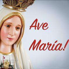Dios te salve María llena eres de gracia; el Señor es contigo; bendita Tú eres entre todas las mujeres y bendito es el fruto de tu vientre Jesús. Santa María Madre de Dios ruega por nosotros pecadores ahora y en la hora de nuestra muerte. Amén.