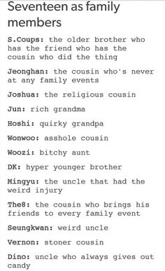 Seventeen as a Family Members XD