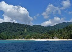 #morning #tioman #salang #malaysia #scubadiving #diving #igersmalaysia #island  #withfish Scuba Diving, River, Island, Outdoor, Diving, Outdoors, Islands, Outdoor Games, The Great Outdoors