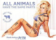 This advertisement animalises Pamela Anderson, and the rest of the female population with her, as it implies that women are animals. An advertising technique used to catch attention here is her body; she is dressed in a mere bikini, which is bound to make people notice this advertisement more. In my opinion, this ad's purpose is for people to notice it, and react somehow, even though it may be negative, as it is animalisation.