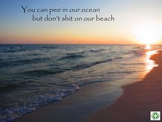 Help clean up beaches of debris to help save the ocean!