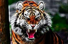 TIGER #4 RV Trailer or Wall Mural Full color Decal Decals Graphics Sticker Art by SuperbDecalsLLC on Etsy