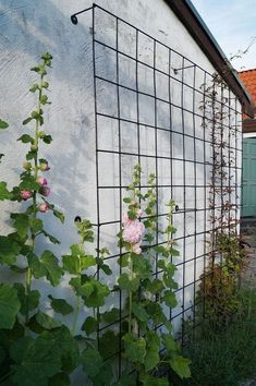 More Than 35 Favourite Side House Garden Landscaping Decoration Ideas With Rocks Sidehousegarden ; 80 Favourite Side House Garden Landscaping Decoration Ideas With Rocks ; Love Garden, Dream Garden, Home And Garden, Small Rose Garden Ideas, Rocks Garden, Design Jardin, Garden Design, Amazing Gardens, Beautiful Gardens