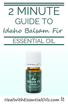 2 minute guide to Idaho Balsam Fir.....Love that smell!!