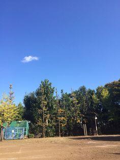 空が嘘みたいに青い、羽根木公園
