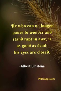 He who can no longer pause to wonder and stand rapt in awe, is as good as dead, his eyes are closed_ #greateinsteinquotes #greatthoughtsofalberteinstein #nolongerpause Albert Einstein Thoughts, Scientist Albert Einstein, Albert Einstein Quotes, Hi Quotes, Need Quotes, As Good As Dead, Nobel Prize In Physics, Philosophy Of Science, Modern Physics