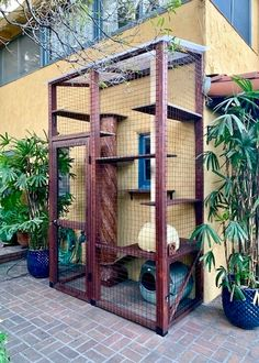 Cat Mansion, Spanish Tile Roof, Dog Kennel Designs, Outdoor Cat Enclosure, Cat Steps, Cat House Diy, Building Management, Stucco Walls, Home