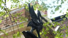 the small liver-bird metal sculpture on the gates of the bluecoat Listed Building, Old Building, Blue Coats, Gates, Liverpool, The Past, Old Things, Sculpture, Bird