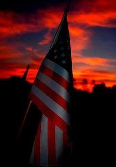 Las Mejores 170 Ideas De Bandera De Estados Unidos De America Bandera De Estados Unidos De America Bandera De Estados Unidos Estados Unidos De América