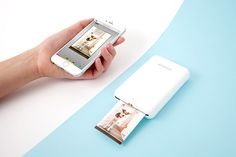 "Polaroid Launches ""Zip"" Instant Mobile Printer. See dog… take photo of dog… print photo of dog… dog chews printer."