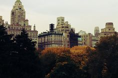 Central Park New York City Upper East Side by patriciapayne
