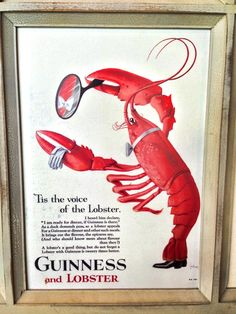 Lobster and Guinness - what is better than that? Lobster Art, Guinness, Dinner Recipes, Good Things, Kitchen, Cucina, Cooking, Kitchens, Supper Recipes