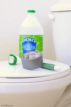 How to keep your toilet clean - brilliant!