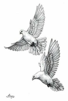 Best Tattoo Bird Dove Holy Spirit IdeasYou can find Dove tattoos and more on our website. Tattoo Sketches, Tattoo Drawings, Dove Sketches, Colombe Tattoo, Pigeon Tattoo, Dove Drawing, Dove Tattoo Design, Angel Tattoo Designs, Vogel Tattoo