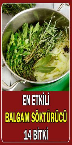 balgam söktürücü bitkiler Herbal Medicine, Seaweed Salad, Salsa, Herbalism, Cabbage, The Cure, Vegetables, Health, Ethnic Recipes