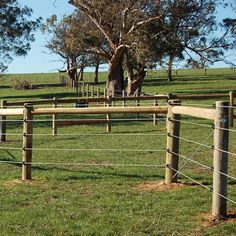 ElectroBraid™ is a permanent electric fence designed especially for horses. It is highly visible to horses, strong, durable and resilient. Elctrobraid is top choice for horse owners. Pasture Fencing, Ranch Fencing, Horse Fencing, Horse Barn Plans, Horse Barns, Horses, Rope Fence, Easy Fence, Horse Shelter