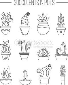 Clipart vectoriel : Set of succulent plants and cactuses in .- Clipart vectoriel : Set of succulent plants and cactuses in pots. Clipart vectoriel : Set of succulent plants and cactuses in pots. Cactus Drawing, Plant Drawing, Iris Drawing, Doodle Drawings, Doodle Art, Kaktus Tattoo, Planting Succulents, Succulent Plants, Potted Plants