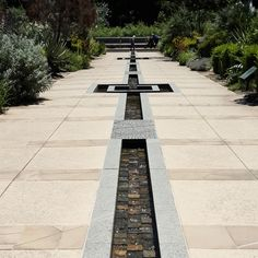 Adelaide Botanic Gardens... Mediterranean Garden by Taylor Cullity Lethlean water feature